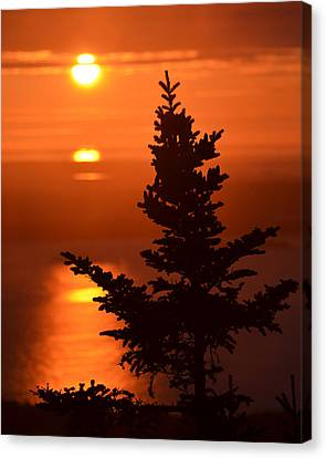 Sunrise On Cadillac Mountain Bar Harbor Maine Canvas Print by Toby McGuire