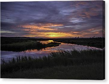 Sunrise On Lake Shelby Canvas Print by Michael Thomas