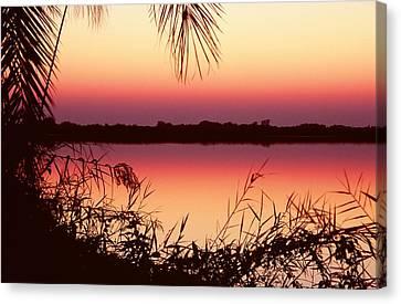 Sunrise On The Okavango Delta Canvas Print by Stefan Carpenter