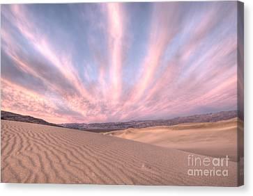 Sunrise Over Sand Dunes Canvas Print by Juli Scalzi