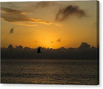 Sunrise Over The Ocean Canvas Print by Zina Stromberg