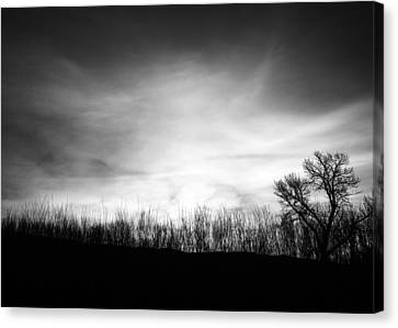 Sunrise Silhouette In Black And White Canvas Print by Vishwanath Bhat
