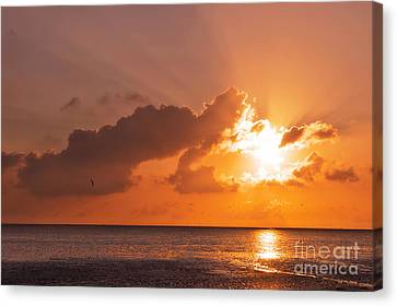 Sunset Canvas Print by Angela Doelling AD DESIGN Photo and PhotoArt