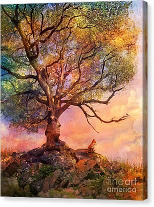Sunset At Fox Mountain Canvas Print by Aimee Stewart