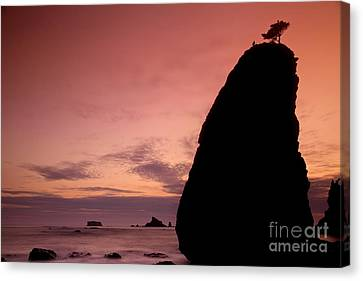 Sunset At Rialto Beach Canvas Print by Keith Kapple