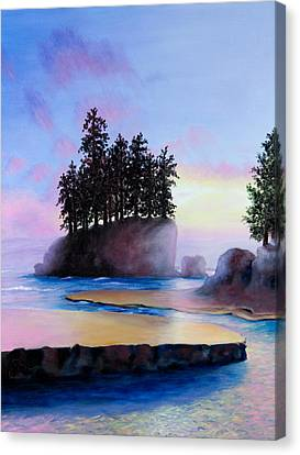 Sunset At Tongue Point Canvas Print by Shelley Irish