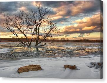 Sunset At Walnut Lake Canvas Print by Nikolyn McDonald