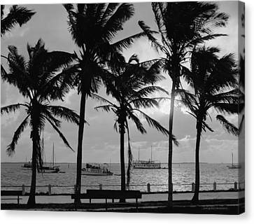 Sunset, Biscayne Bay, Miami, Florida Canvas Print by American School