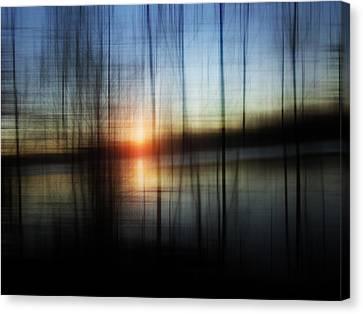Sunset Blur Canvas Print by Florin Birjoveanu