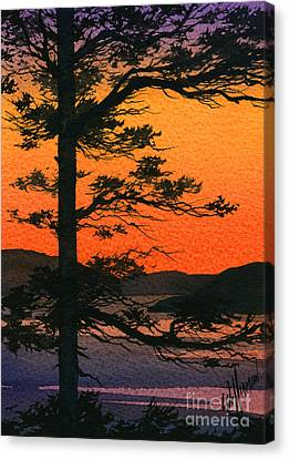 Sunset Glow Canvas Print by James Williamson