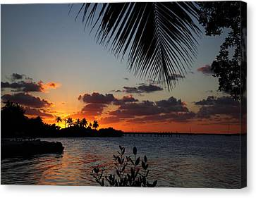 Sunset In Paradise Canvas Print by Michelle Wiarda