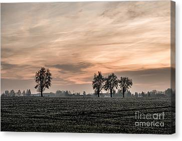 Sunset In The Country - Orange Canvas Print by Hannes Cmarits