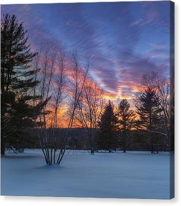 Sunset In The Park Square Canvas Print by Bill Wakeley
