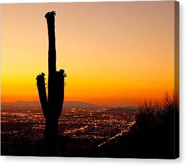 Sunset On Phoenix With Saguaro Cactus Canvas Print by Susan Schmitz