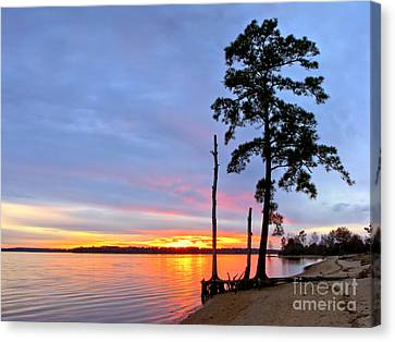 Sunset On The James River Canvas Print by Olivier Le Queinec