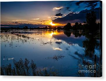 Sunset Reflections Canvas Print by Steven Reed