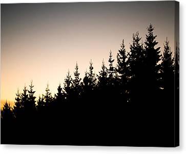 Sunset Canvas Print by Robert Hellstrom