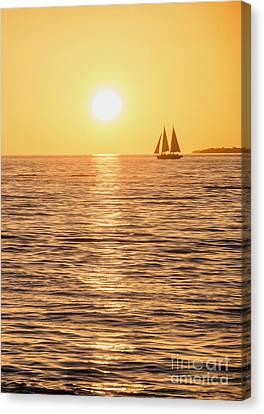 Sunset Sail Canvas Print by Jon Neidert