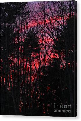 Sunset Silhouetts Canvas Print by Elizabeth Dow