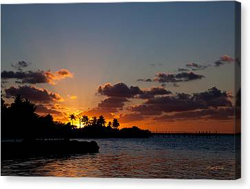 Sunset Song Canvas Print by Michelle Wiarda