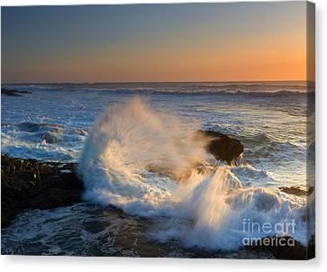 Sunset Spray Canvas Print by Mike Dawson
