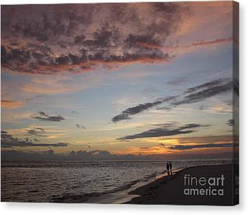 Sunset Stroll Canvas Print by Elizabeth Carr