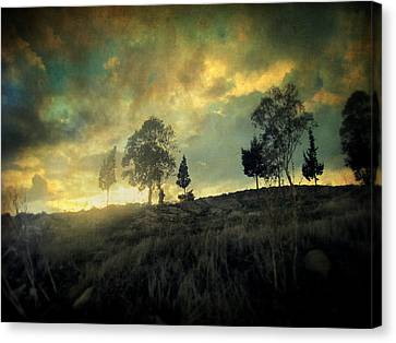 Sunset Trip II Canvas Print by Taylan Apukovska