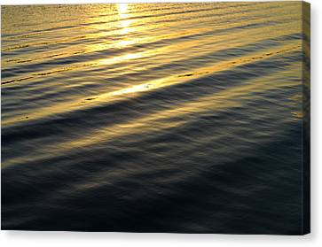 Sunset Waves Canvas Print by Laura Fasulo