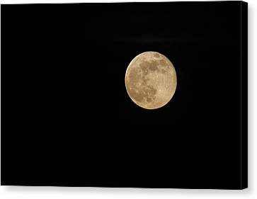 Supermoon Canvas Print by Kimberly Oegerle