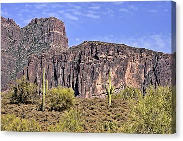 Superstition Wilderness Arizona Canvas Print by Christine Till