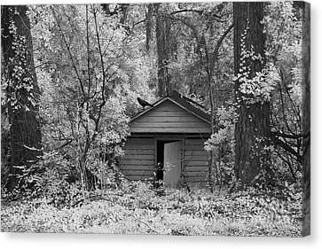 Sureal Gothic Infrared Woodlands Haunting Spooky Eerie Old Building With Black Ravens Canvas Print by Kathy Fornal