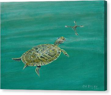Surface Tension Canvas Print by Rob Dreyer AFC