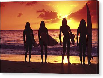 Surfer Girl Silhouettes Canvas Print by Sean Davey