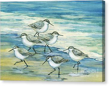 Surfside Sandpipers Canvas Print by Paul Brent