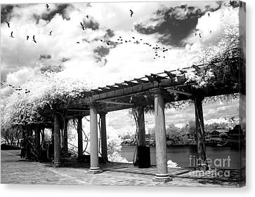 Surreal Augusta Georgia Black And White Infrared  - Riverwalk River Front Park Garden   Canvas Print by Kathy Fornal