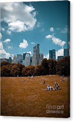 Surreal Summer Day In Central Park Canvas Print by Amy Cicconi
