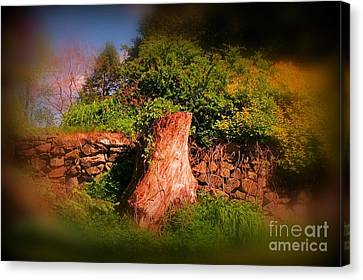 Survivor Canvas Print by John Malone