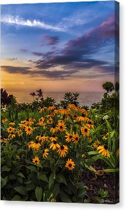 Susan's Sunset Canvas Print by Mark Papke