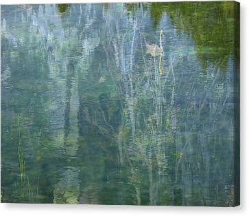 Swanee River Canvas Print by Lyn  Perry
