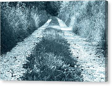 Swedish Road In Summer 3 Canvas Print by Micah May