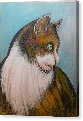 Sweet Calico Canvas Print by Phyllis Dunn