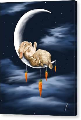 Sweet Dreams Canvas Print by Veronica Minozzi