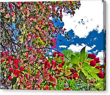 Sweet Escape Canvas Print by Minding My  Visions by Adri and Ray