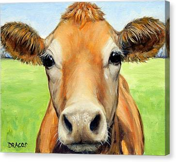 Sweet Jersey Cow In Green Grass Canvas Print by Dottie Dracos