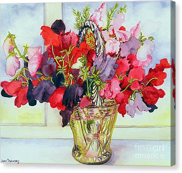 Sweet Peas In A Vase Canvas Print by Joan Thewsey