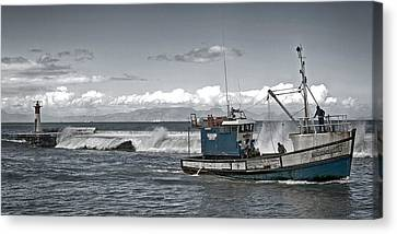 Swell Return Canvas Print by Andrew  Hewett