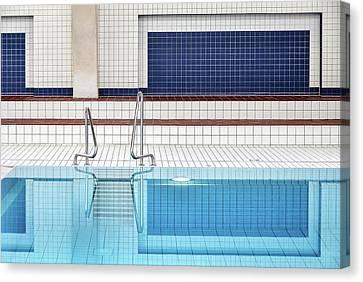 Swimming Canvas Print by Renate Reichert