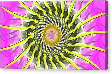 Swirl Canvas Print by Bobbie Barth
