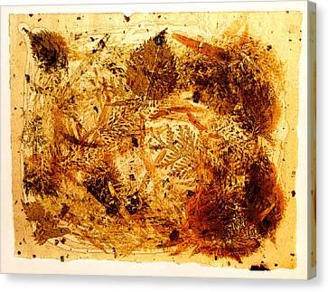 Swirl Canvas Print by David Blank