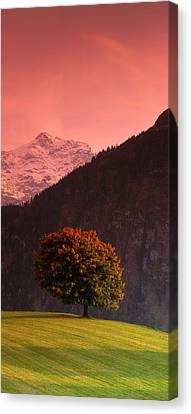 Switzerland, Alps Canvas Print by Panoramic Images